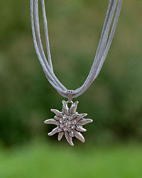 """Edelweiß"" necklace silver"