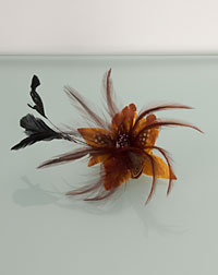Feather clip brown