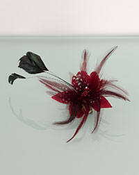 Feather clip ruby