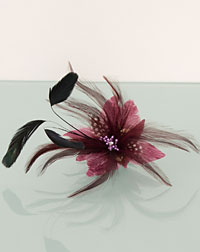 Feather clip rose