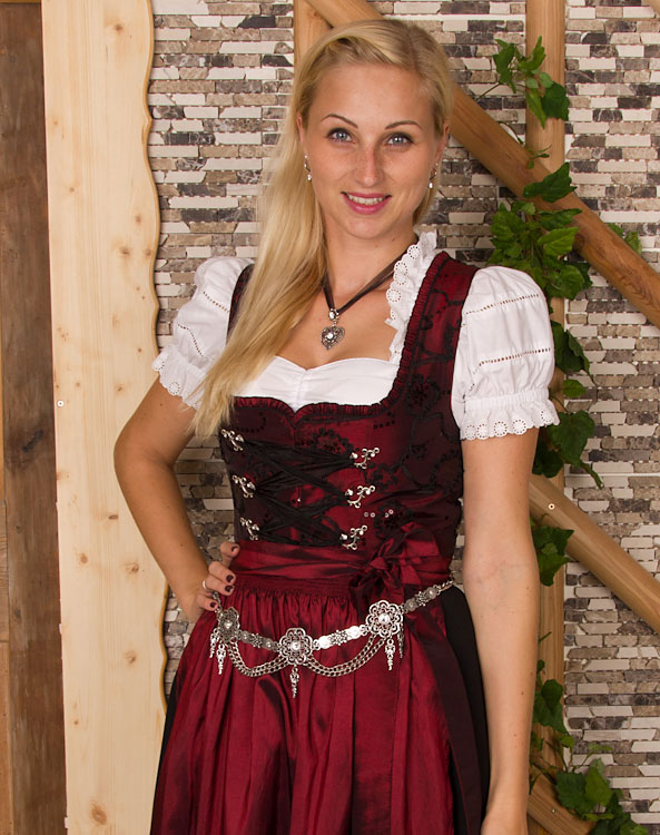 plauen dirndl mit sch rze. Black Bedroom Furniture Sets. Home Design Ideas